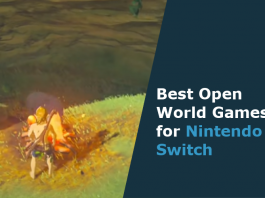 open world games for nintendo switch